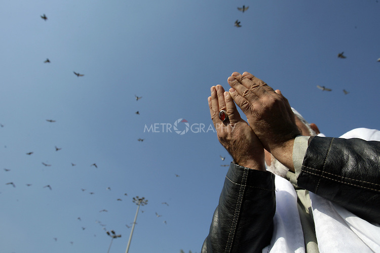 KARBALA, IRAQ: A Shia pilgrim brings his hands up in prayer while pigeons fly above...Shia pilgrims pray during the last day of the Ashura festival...Photo by Metrography