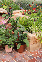 Urban/suburban vegetable &amp; flower garden in containers and pots and raised beds on brick patio
