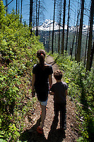 Eliza and Max on a Short Hike Through Burned Out Forest Off Going to the Sun Road, Glacier National Park, Montana, US
