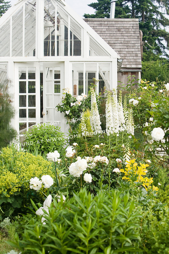 This white-painted greenhouse was salvaged from a local arboretum and restored for use here, and adds to the romantic, cottage garden feel of the Sissinghurst-style white garden behind the farmhouse on this property.  The garden also includes white peonies and delphiniums, white roses, and garden flox, among others. Garden design by Toni Christianson, Christianson's Nursery