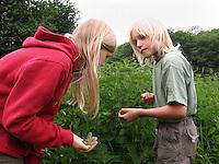 Junge und Mädchen, Kinder suchen auf Wiese nach Insekten und anderen Tierchen zwischen Brennnesseln