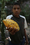 Natalio Gálvez Santo, 17, from La Cerca, holds a cocoa pod from the local trees. Barrick and Goldcorp's Pueblo Viejo open-pit gold mine threatens the cocoa-bean producing community of La Cerca. Cotuí, Sánchez Ramírez, Dominican Republic. April 2012.