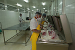 Preparing tuna loin for packing / shrinkwrapping. Nutrindo Fresfood International tuna processing plant for export market.