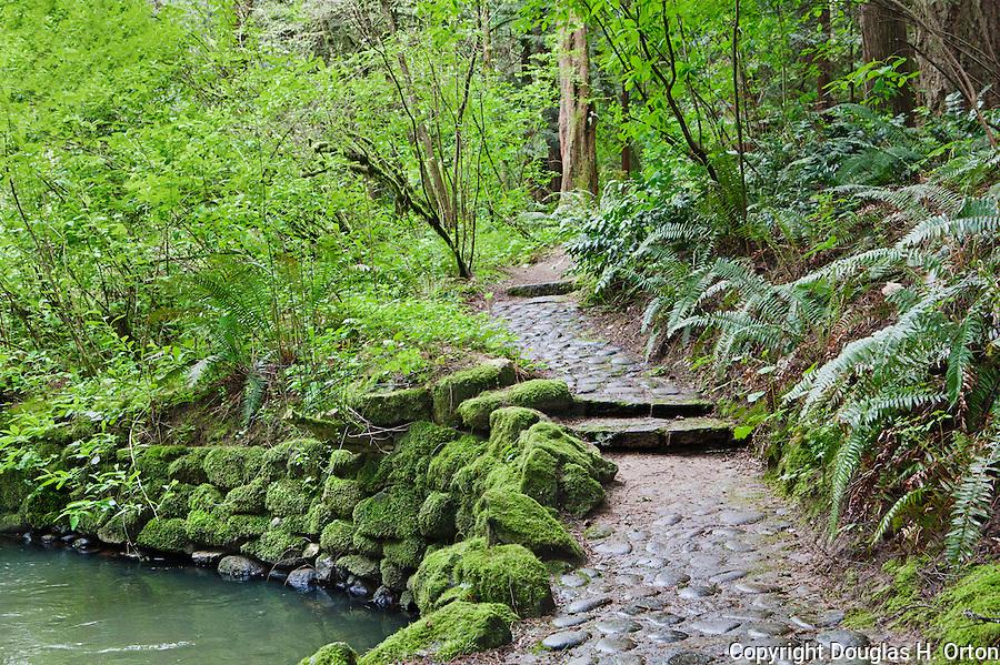 Leach Botananical Garden Portland Oregon USA A public
