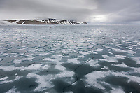 Pack ice in the Svalbard archipelago.