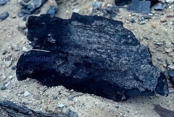 Lignite Coal.