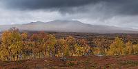 Autumn mountain landscape along Kungsleden trail in Vindelfjällen nature reserve, Lapland, Sweden