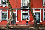 Mexico, Mexico City, Coyoacan Neighborhood, Historic Center, Place of the Coyotes