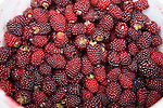 Raspberries, Cotacachi City & Market