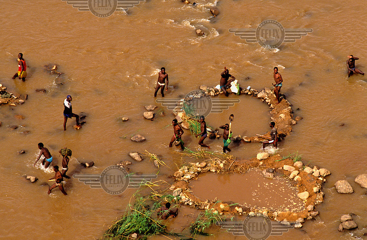 © Paul Lowe / Panos Pictures..Lunda Norte, ANGOLA. 1992. Diamond Rush...Illegal diggers (known as camamgistas) working in the huge Catoba mine which stretches for two miles along the banks of the river Cuango. These miners are setting up small dams to dig gravel from the riverbed. Up to 5,000 miners are on site at any one time. The diggers work in teams of twenty, staking out their claim to a patch of land. One of them, who takes a double share of the profits, then sells the diamonds to one of the many dealers and smugglers...Angola is the world's fourth largest diamond producer, generating $650m a year, although illegal mining and smuggling significantly distort the figures. With the country embroiled in civil war for almost the entire period since independence in 1975, much of the diamond production has been in the hands of the UNITA rebels.