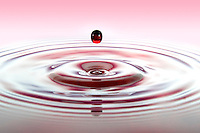 Red water drop falling into red / pink water