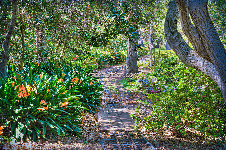 Descanso Gardens, Mulberry Pond, Bridge, La Canada, Flintridge,  Garden, flowers, mixed, flora, botanic, horticulture