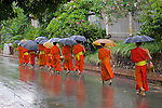 Monks Walking To Receive Food