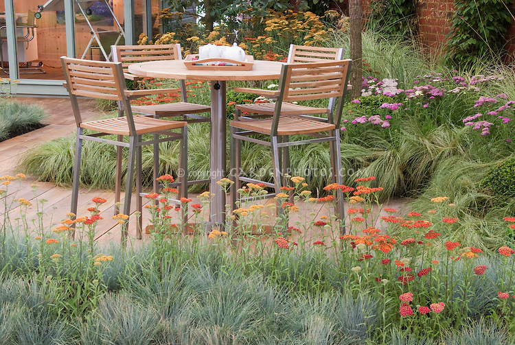 Garden Furniture near House in backyard with wooden deck patio planted with airy ornamental grasses and Achillea yarrow flowers for sense of movement and sophistication