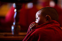 The child monk at Tiksey monastery in Ladakh.
