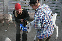 Nils-Aksel Bransfjell får hjelp av søsteren Maja-Stina, som til vanlig bor i Kiruna. Kalvmerking, merking reinkalv, Essand reinbeitedistrikt (Saanti sijte), Skarpdalen, Tydal/Meråker. Foto: Bente Haarstad Reindrift i Saanti Sijte, sørsamisk reindrift.