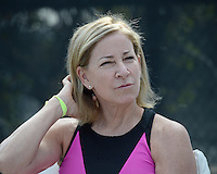 BOCA RATON - NOVEMBER 18: Chris Evert attends the Chris Evert-Raymond James Pro Celebrity Tennis Classic held at the Boca Raton Resort & Club on November 18, 2016 in Boca Raton, Florida. Credit: mpi04/MediaPunch