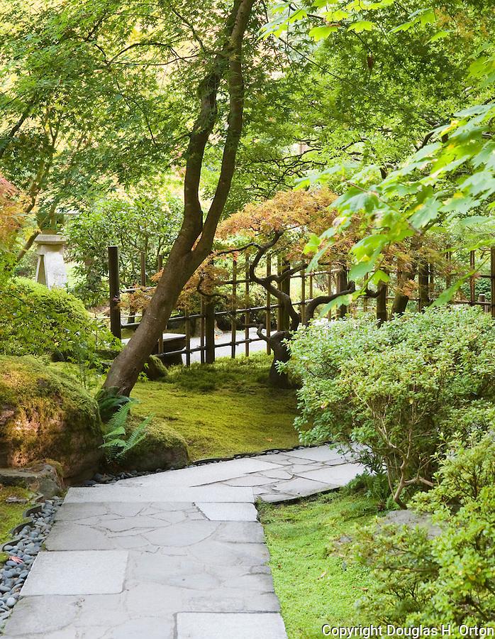 Japanese garden path douglas orton imaging for Japanese garden path