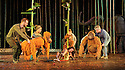 Regent's Park Open Air Theatre presents RUNNING WILD, by Michael Morpurgo, in an adaptation by Samuel Adamson. the production is directed by Timothy Sheader and Dale Rooks, design is by Paul Wills and lighting design by Paul Anderson. Picture shows: The Orangutans, Ava Potter (Lilly)