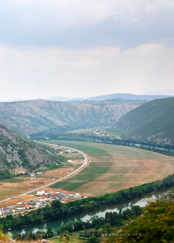 A view over the vineyards planted on the plain along the river Neretva, in the Mostar Citluk region near the village Zitomislici, with dramatic mountains framing the valley. Federation Bosne i Hercegovine. Bosnia Herzegovina, Europe.