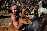 A rancher grabs two wild horse foals with his bare hands during the Rapa das Bestas (Shearing of the Beasts) festival in Torroña, Spain, 5 June 2011. The herds of of wild horses roam freely the hills of Galicia in the north-western Spain. Each year, in the beginning of summer, villagers herd horses down from the higher ground, rounding them up in the curro, a centuries-old stone arena. Here, ranchers catch the animals one by one and shear their manes and tails. Some of the young men, showing up their strength and courage, fight the untamed horses just with their bare hands. At the end of Rapa das Bestas, a 400-year-old Spanish tradition, the newborn foals are branded and all horses are released back into the wilderness.