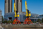 Buenos Aires, Argentina - Cranes on the water in downtown Buenos Aires