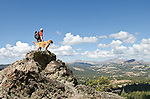 A hiker and dog (golden retriever) survey the view in the Sierra Nevada mountains, Toiyabe National Forest, California
