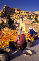 Goreme, Cappadocia, Nevsehir, Turkey. People dry apricots on their roof in the village of Cavusin. Although toursim is upcoming, many people still live of their traditional livelyhood. they work the fields in the fairy chimney landscape of Cappadocia and the Goreme National Park. Photo by Frits Meyst / MeystPhoto.com