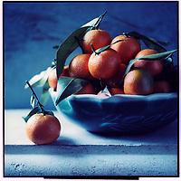 Europe/France/Corse/2B/Haute-Corse: Clémentine de Corse - Stylisme : Valérie LHOMME //  Europe, France, Haute Corse,  Corsican clementines