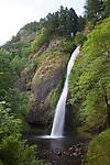 Horsetail Falls, Columbia River Gorge, Oregon, USA