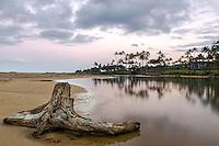 Wailua River driftwood at Kapaa beach at sunset in Kauai, Hawaii