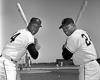 San Francisco sluggers Willie McCover and Willie Mays at Casa Grande Spring Training site in 1967..(photo by Ron Riesterer)