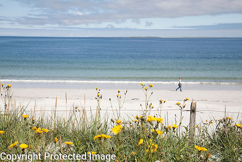 Whitemill Bay Beach, Sanday, Orkney Islands, Scotland