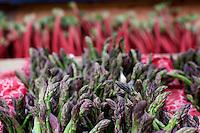 Asparagus and Rhubarb