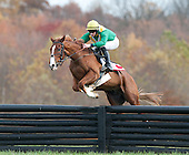 Pennsylvania Hunt Cup Races - 11/06/2016