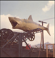 BNPS.co.uk (01202 558833)<br /> Pic: NateDSaunders/BNPS<br /> <br /> ***Please use full byline***<br /> <br /> One of the huge mechanical dummy sharks used in filming. <br /> <br /> Rare behind-the-scenes photographs taken on the set of the cult movie 'Jaws' has surfaced after 40 years.<br /> <br /> The 75 pictures include ones of star Roy Scheider, who played shark-hunting police chief Brody in the classic 1975 film, and director Steven Spielberg.<br /> <br /> There are several snaps of the giant mechanical rubber shark that wreaked terror on the fictional seaside resort of Amity.<br /> <br /> It is depicted being hoisted in the air and moved into position as well as sat in a dry dock during a break in the filming.