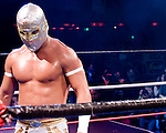 Lucha Va Voom, masked Mexican wrestlers and burlesque