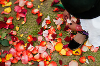 "A young girl plays with colorful rose petals during the Inti Raymi celebration in Pichincha province, Ecuador, 27 June 2010. Inti Raymi, ""Festival of the Sun"" in Quechua language, is an ancient spiritual ceremony held in the Indian regions of the Andes, mainly in Ecuador and Peru. The lively celebration, set by the winter solstice, goes on for various days. The highland Indians, wearing beautiful costumes, dance, drink and sing with no rest. Colorful processions in honor of the God Inti (Sun) pass through the mountain villages giving thanks for the harvest and expressing their deep relation to the Mother Earth (Pachamama)."