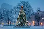Christmas snow on Boston Common, Boston, MA