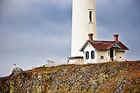 The Pigeon Point Lighthouse, south of San Francisco on the Californian coast, 2009.