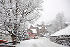 Grindelwald in the winter snow - Swiss alps - Switzerland.