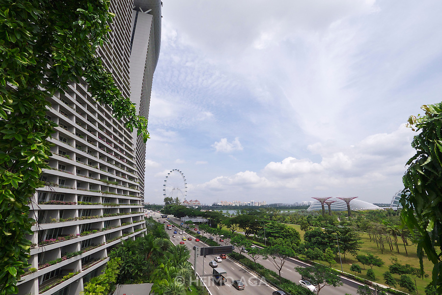 Singapore. Marina Bay Sands Hotel. Gardens by the Bay, Supertrees.