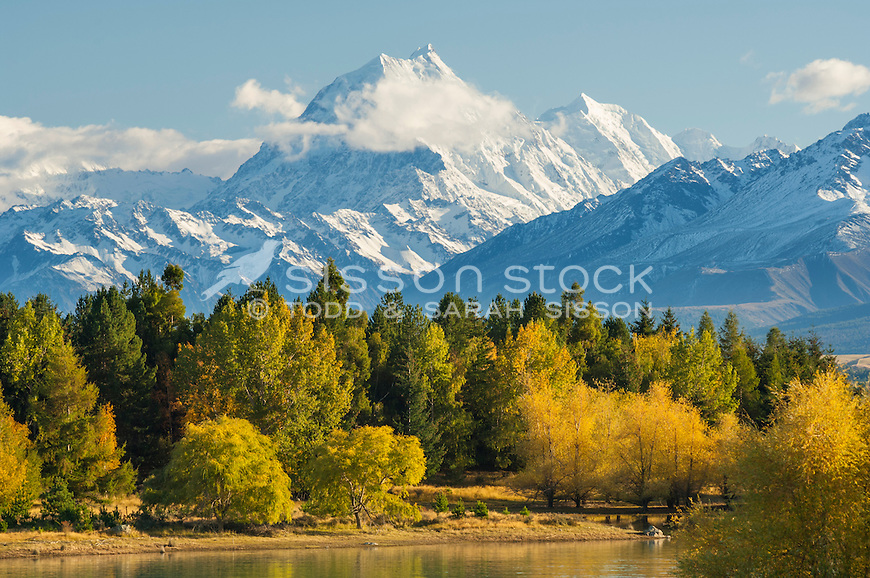 Image of vivid Autumn colours on the shores of Lake Pukaki. Aoraki Mt Cook towering in background. Mackenzie Country, South Canterbury South Island New Zealand.
