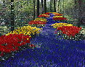 AA00428-01...NETHERLANDS - Keukenhof, a formal garden devoted to bulb flowers.
