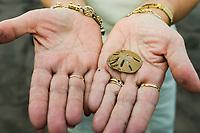 Woman holds sand dollar, Tortuguero, Costa Rica, Central America.
