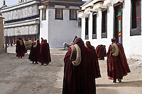 Monks of the gelukpa monastery of Labrang are joining the noon recitation. After the riots of march 2008, more than 150 of them have been detained.