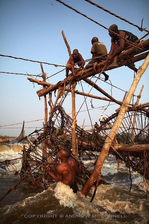 Fishermen at Wagenia Falls (or Boyoma Falls) raise a bamboo basket from the rapids, near Kisangani, DR Congo.