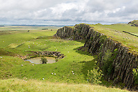 Northumberland,  England, UK.  Walltown Crag, seen from Hadrian's Wall (Pennine Way) Footpath.  The path proceeds along the edge of the escarpment on the right.