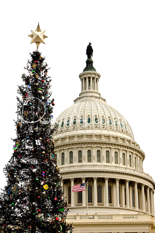 A decorated Christmas tree is framed in front of the US Capitol building in Washington, DC.