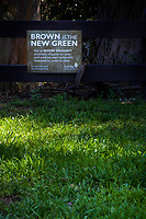 """A holdover from the years of drought, a sign proclaiming """"Brown is the New Green"""" stands over green grass at a regional park."""